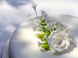 0cb69-flower_05